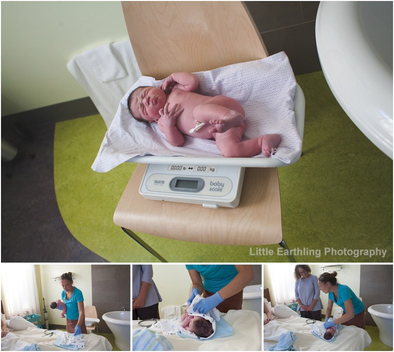 bellingham birth photographer Renee Bergeron captures the raw beauty of birth