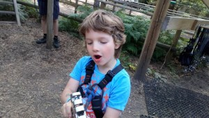 Noah in his harness at Go Ape.