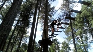 A staff member helps Noah on the Go Ape Tree Top Junior course.