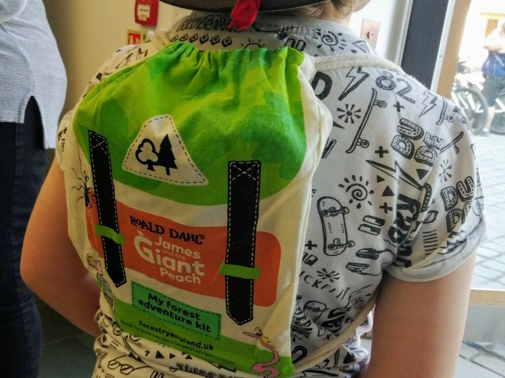 Image of forest adventure pack bag on boy's back
