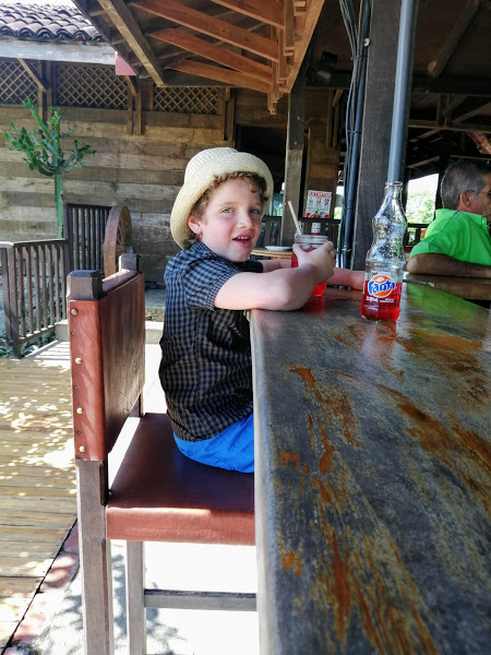 Noah sits at the bar at the sugar plantation in Palo Verde