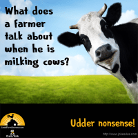What does a farmer talk about when he is milking cows? Udder nonsense!