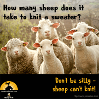 How many sheep does it take to knit a sweater? Don't be silly - sheep can't knit!