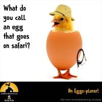 What do you call an egg that goes on safari? An Eggs-plorer!