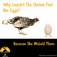 Why Couldn't The Chicken Find Her Eggs?  Because She Mislaid Them.