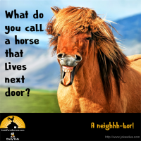 What do you call a horse that lives next door? A neighhh-bor!