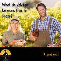 What do chicken farmers like to share? A good yolk!