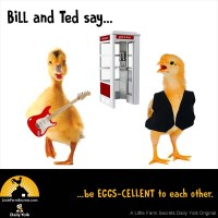Bill and Ted say... ...be EGGS-CELLENT to each other.