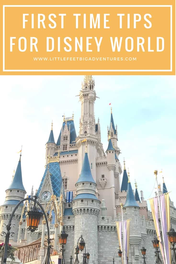 Use these insider tips to help plan your first trip to Disney World. Read 8 tips that will help you plan and save money.