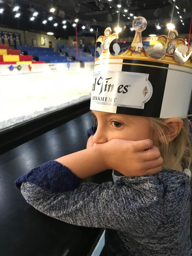 Medieval Times in Dallas, TX is a great place for the entire family.