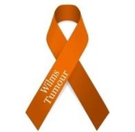 Wilms Tumour Awareness Ribbon