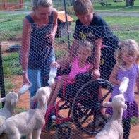 February 2013 - Feeding the lambs