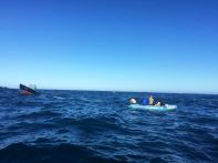 Swim for Hope 2016 - The Swim 7