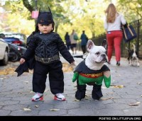 LittleFun - A kid and a dog in batman and robin costumes