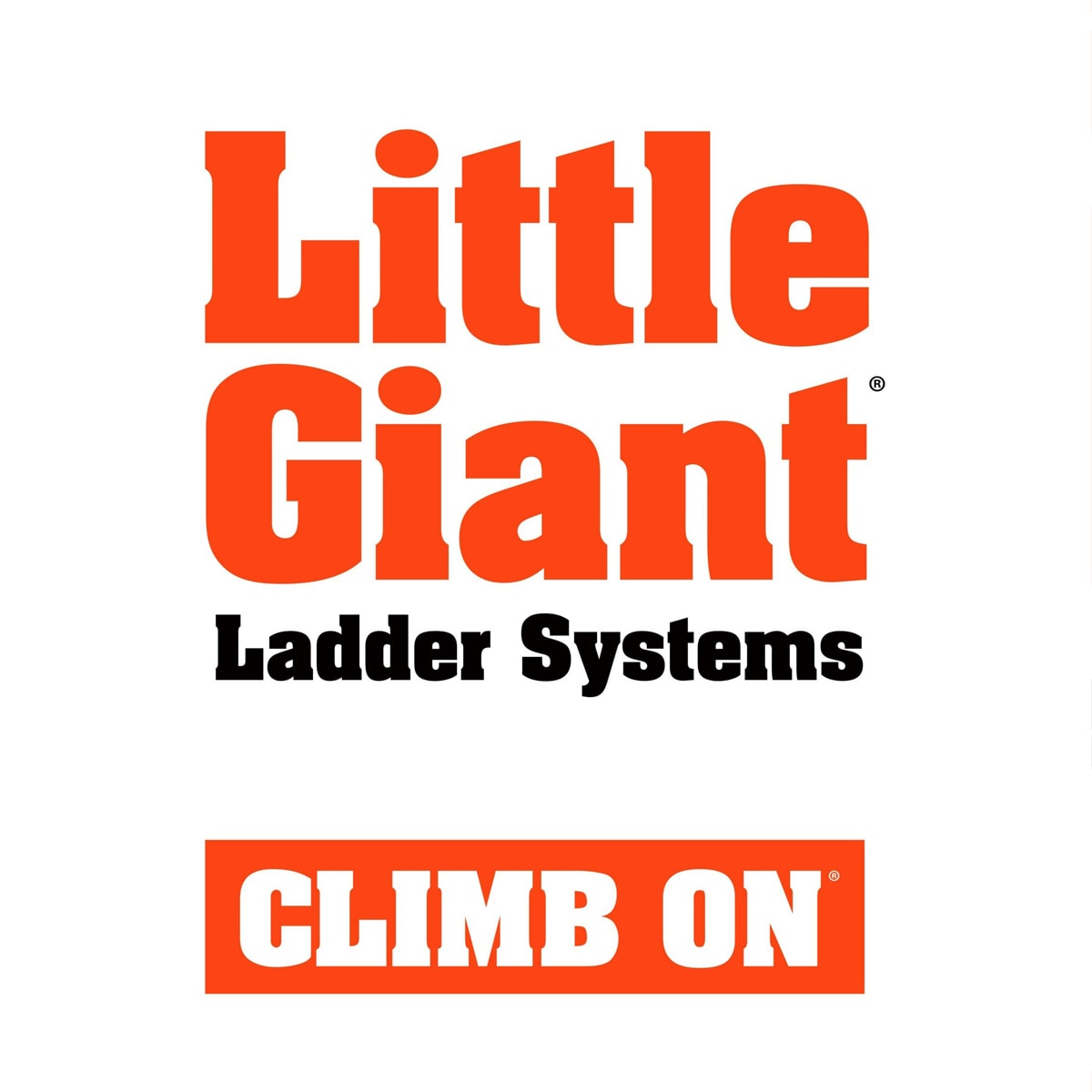 home little giant ladder