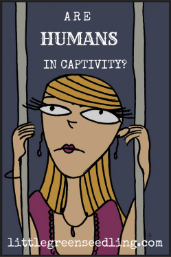 Are Humans In Captivity?