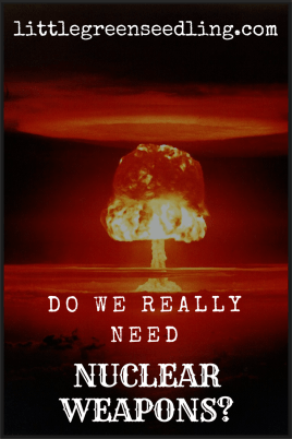 Nuclear Weapons As A Deterrent