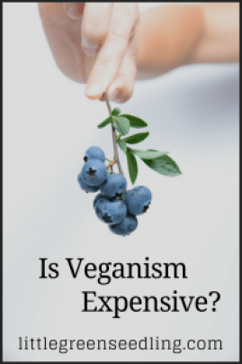 Is Veganism Expensive