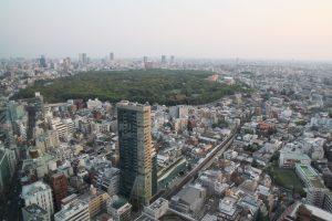 Tokyo Visit Blog Travel Get Lost Guide Image