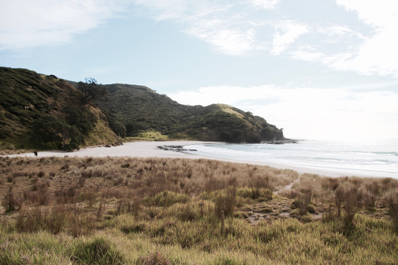 Exploring New Zealand's North at Cape Reinga and 90 Mile Beach