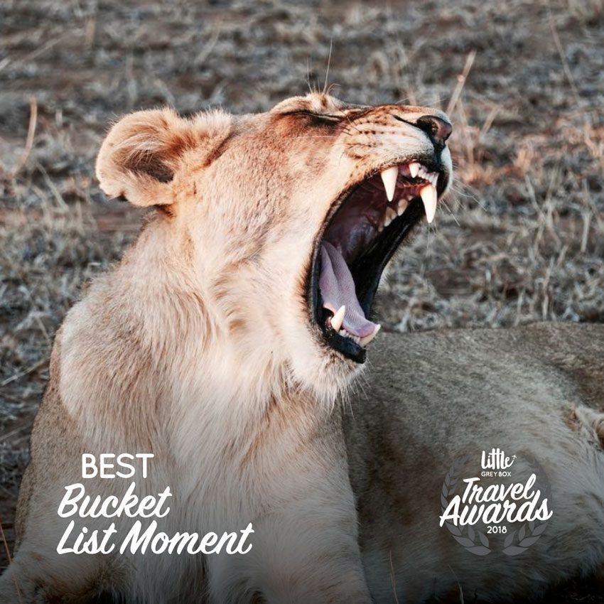 Best-Bucket-List-Experience-Little-Grey-Box-Awards-2018-Winner.jpg