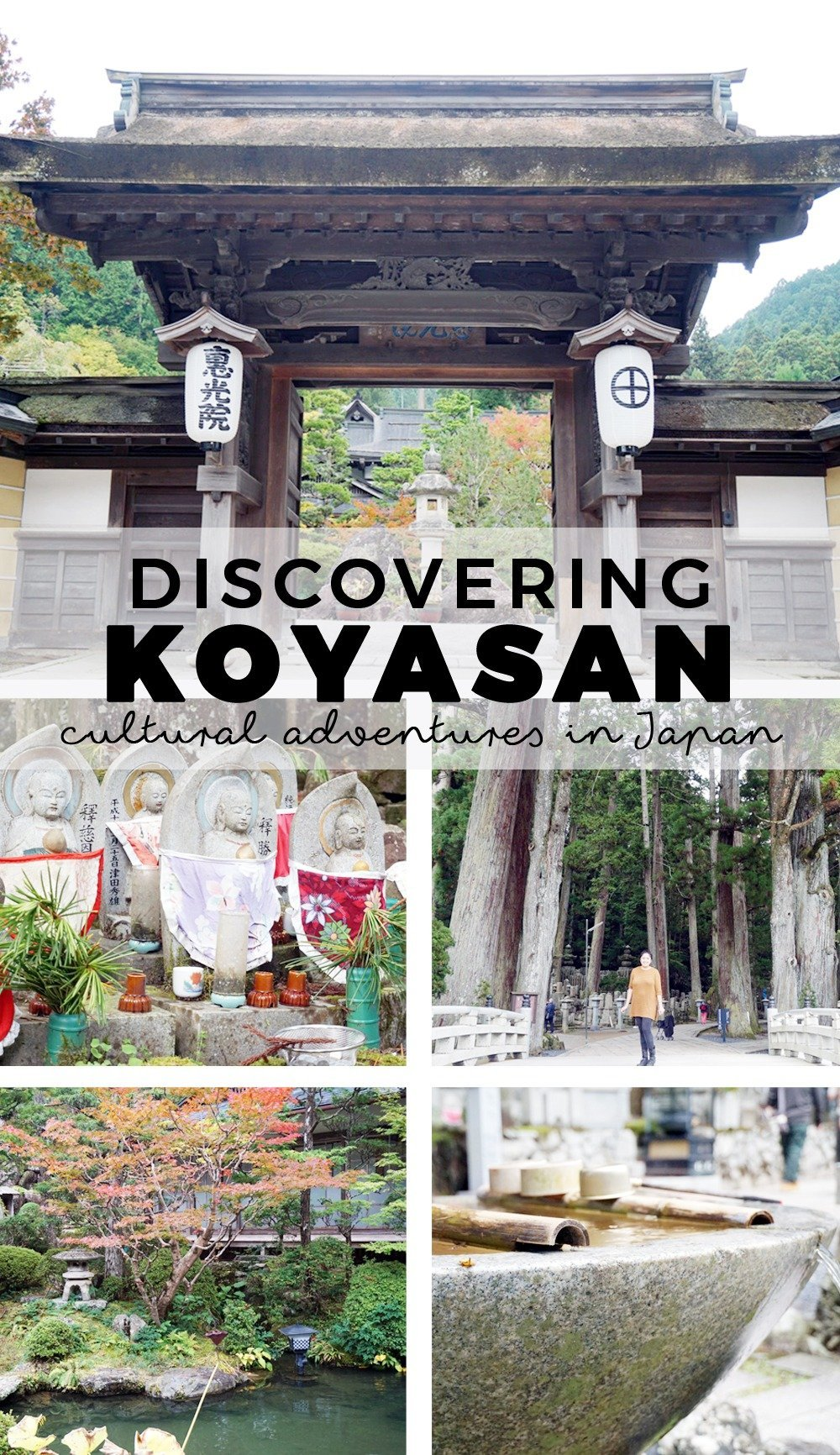 In recent years, Japan has become a top tourist destination. But here's one place you probably haven't heard of: Koyasan, a beautiful mountain complex where you'll meet monks, eat traditional food, and visit the dead.