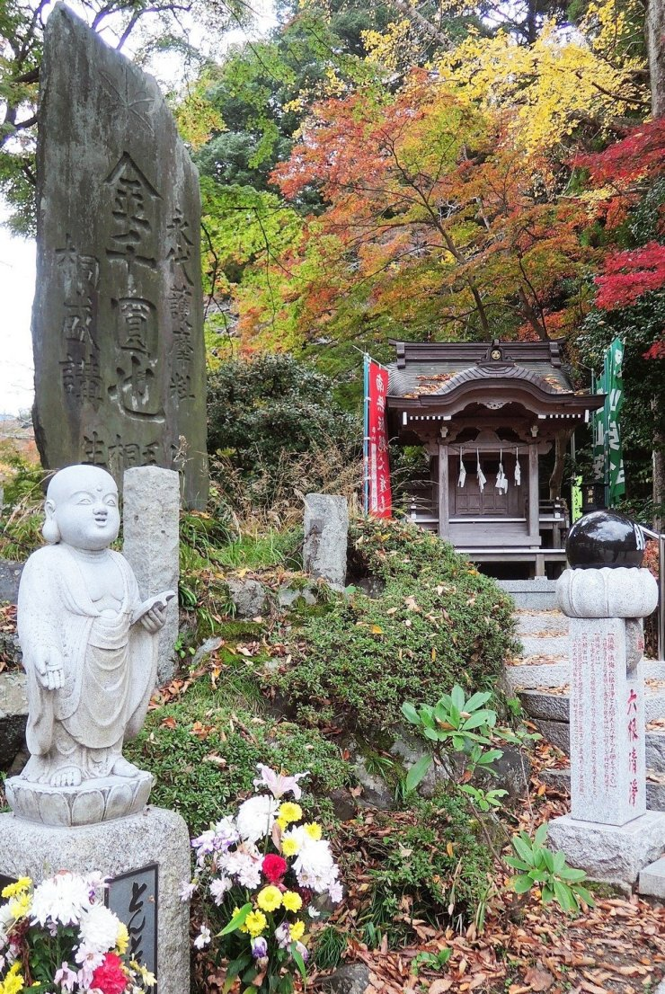 A visit to Tokyo is an endless feast for the senses and certainly a mecca for those craving the adrenaline rush of the city. But for those craving a quiet, relaxing holiday, you'll find plenty of pockets of peace throughout the city. Click through for a guide to a relaxing holiday in Tokyo.