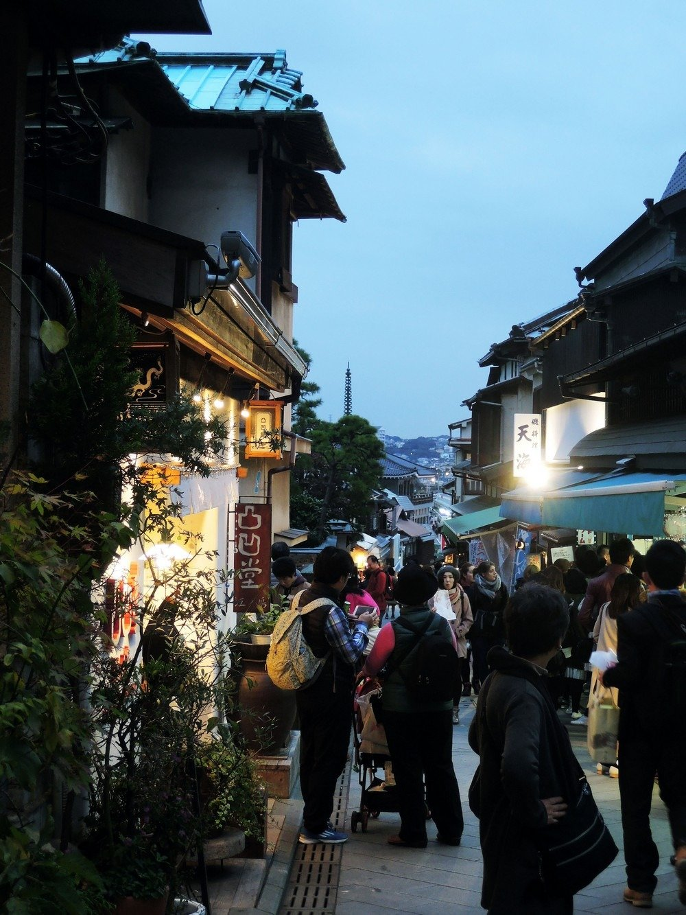 Escape the urban jungle of Tokyo and step into the historic streets of Enoshima for a day of culture and seaside adventures.
