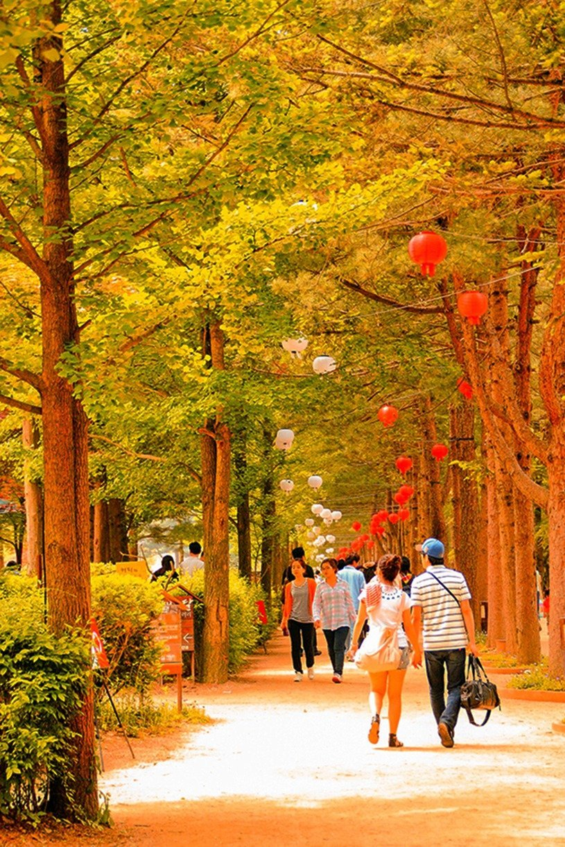 Spend the vibrant autumn season in South Korea's beautiful Nami Island! It's a great day trip from Seoul where you can be up close and personal with nature, art, and even your favorite K-drama – click through to plan your trip!
