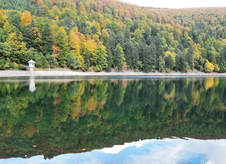Driving in Alsace will bring you to gorgeous natural landscapes like this: the Lac du Ballon. Couple with a hike to the Grand Ballon and you'll have a relaxing half-day in the mountains of Vosges.