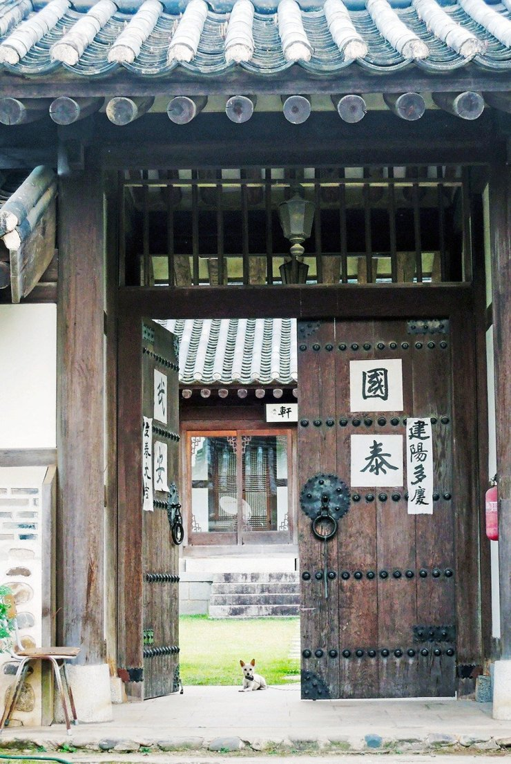 Going on a road trip in South Korea will bring you to lovely, quiet villages like Andong. Within it is the The Hahoe Folk Village, a perfect glimpse of the traditional Korean countryside and a throwback to the Joseon dynasty.
