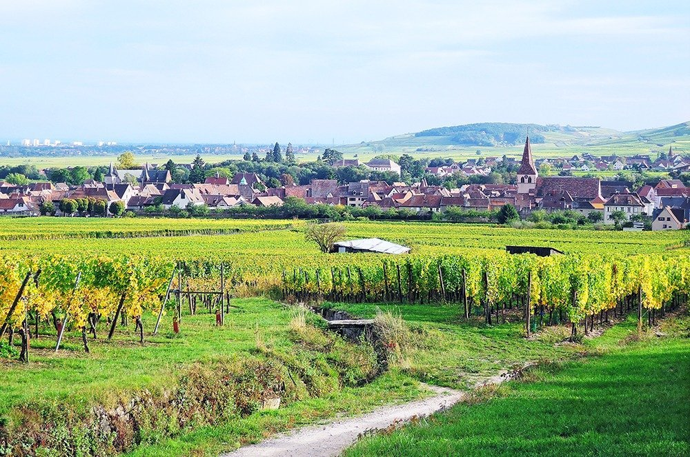 Where to stay in Colmar, France – Alsace is best enjoyed as a road trip with family and friends. For the best home-away-from-home experience, stay in a lovely villa or a spacious apartment. Here are our top holiday rental picks and where to stay in Colmar.