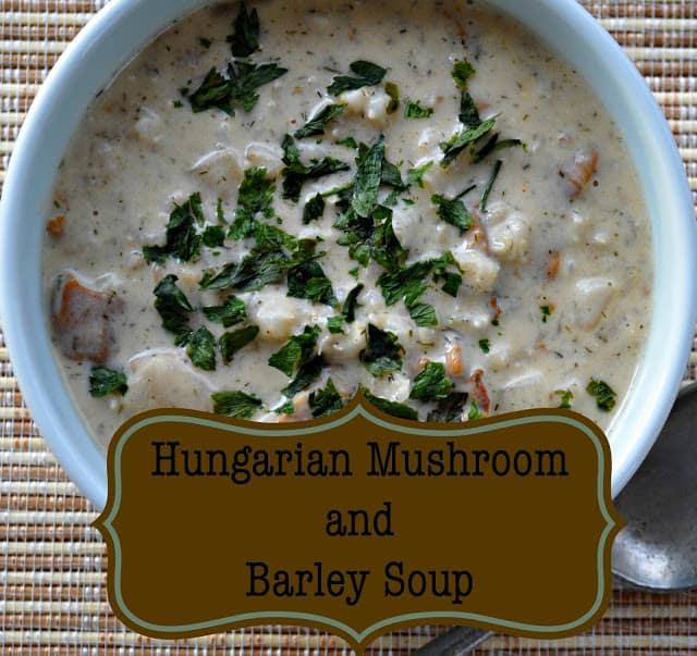 Hungarian Mushroom and Barley Soup