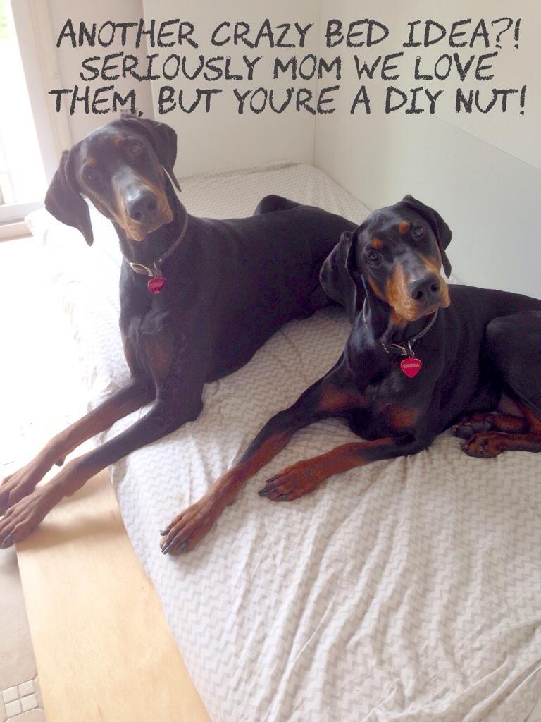 Ikea Hack Littlehousesbigdogs