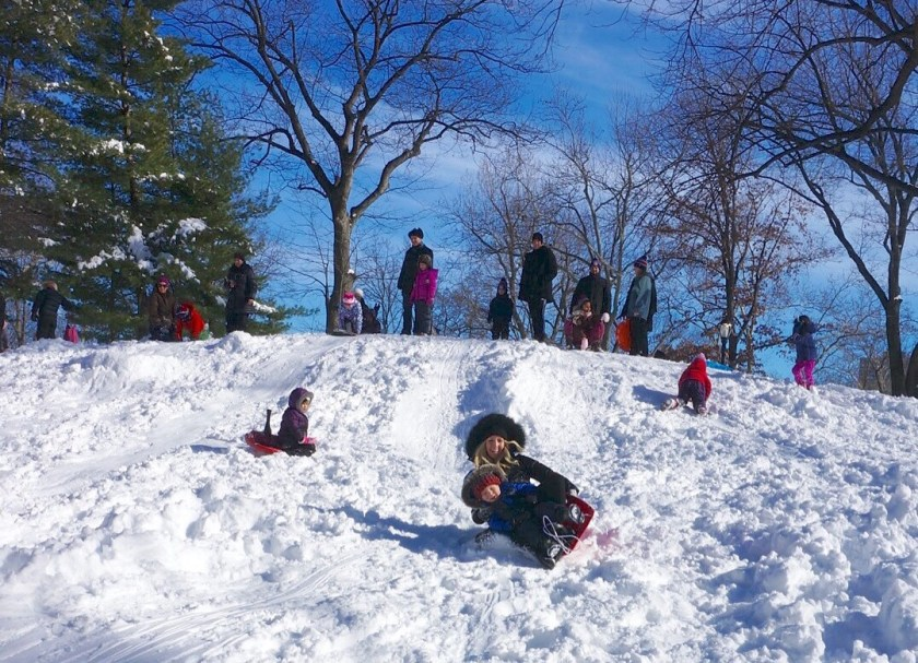Sledding down a hill in Cental Park