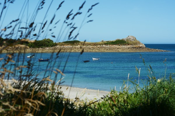 France Brittany Roscoff Our French Adventure Week one beach view of boats through the reeds