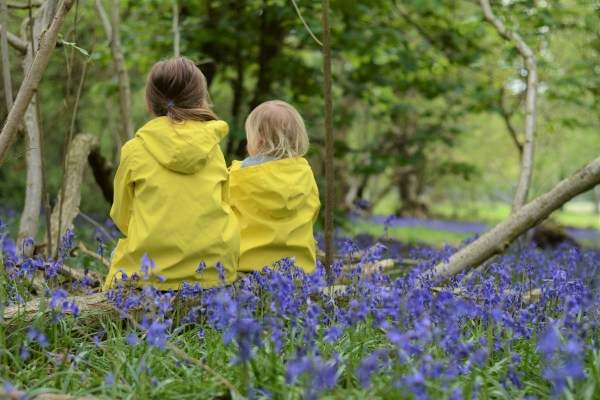 Sisters Siblings Bluebells tree swing