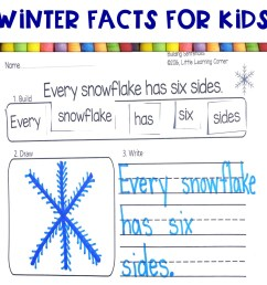 10 Fun Facts About Winter   Little Learning Corner [ 1008 x 1008 Pixel ]