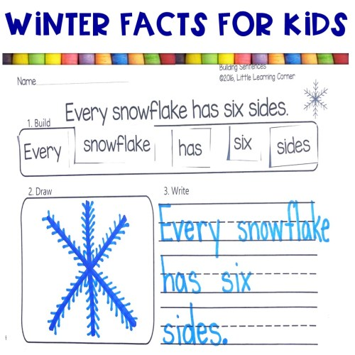small resolution of 10 Fun Facts About Winter   Little Learning Corner