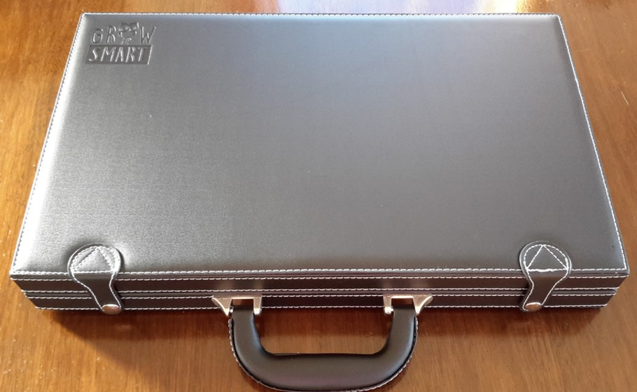 backgammon-case