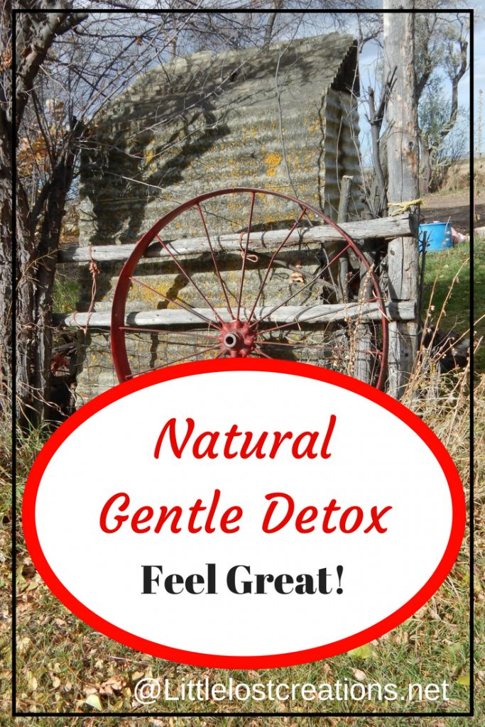 Natural Gentle Detox, Feel great, old outhouse with fence and wagon wheel