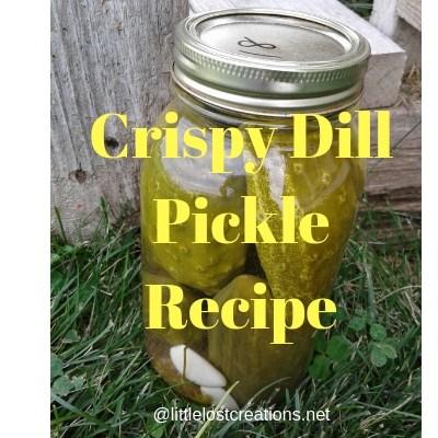 Crispy Dill Pickle Recipe – Easy DIY