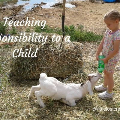 Tips for Teaching Responsibility to a Child