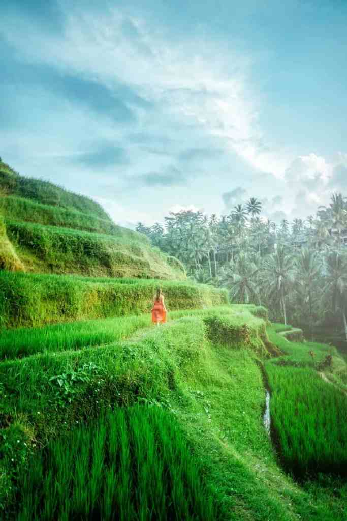 Woman walking through rice fields for travelling alone while ina relationship