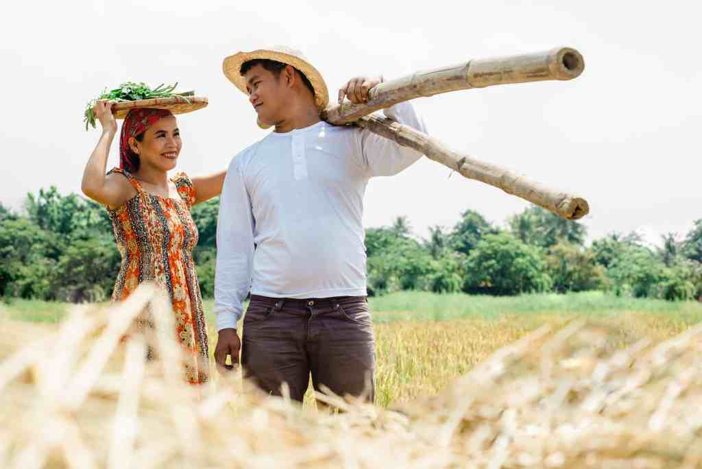 Farmer couple harvesting on a WWOOF farm smiling at each other.