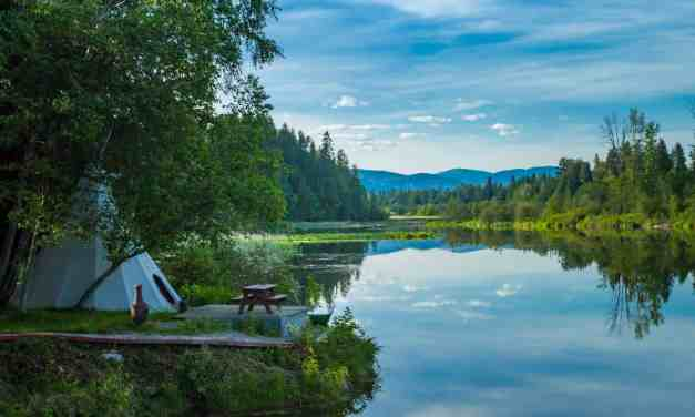 The Best Eco Glamping Essentials for Luxury Camping