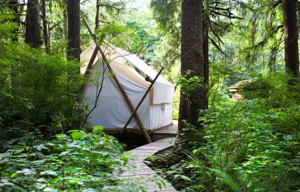 How to Have a DIY Glamping Experience in Your Own Garden