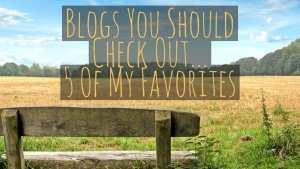Blogs You Should Check Out.. littlemissblog.com
