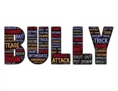 Bully Descriptions