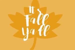 Its Fall Ya'll.. Fun Fall Ideas